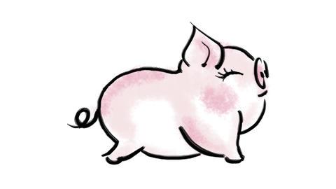 Zodiac Pig Stock Video Footage
