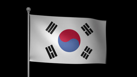 South Korea Flag Stock Video Footage