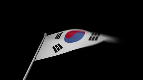 South Korea Flag Stock Video Footage
