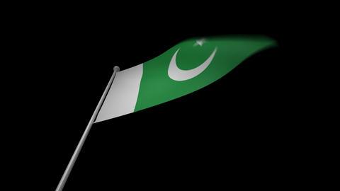 Pakistan Flag Stock Video Footage