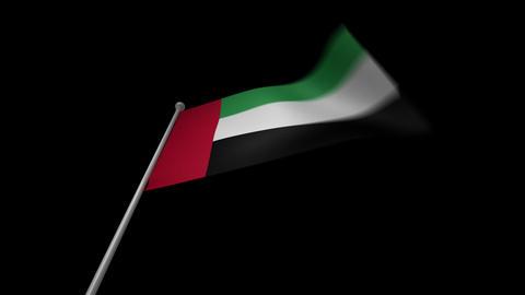 United Arab Emirates Flag Stock Video Footage