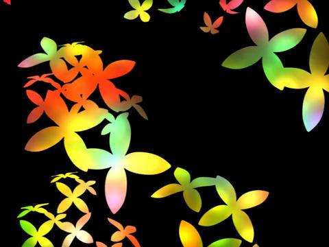 flower power Stock Video Footage