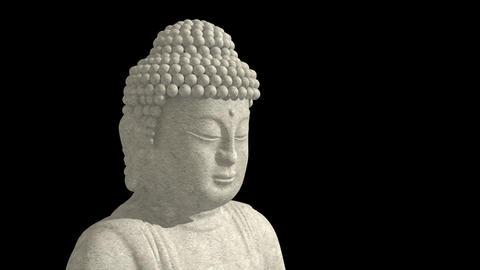 Buddha on lotus wheel Stock Video Footage
