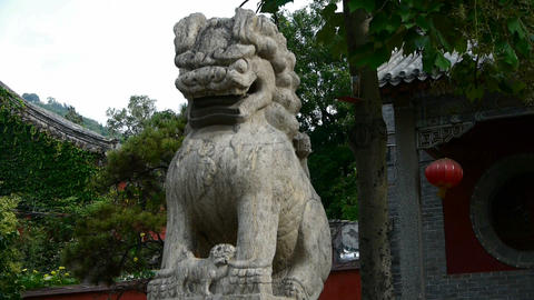 Temple stone lion,Historical monuments Stock Video Footage