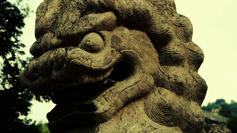 Stone lion,historical monuments,shaking tree shadows Footage