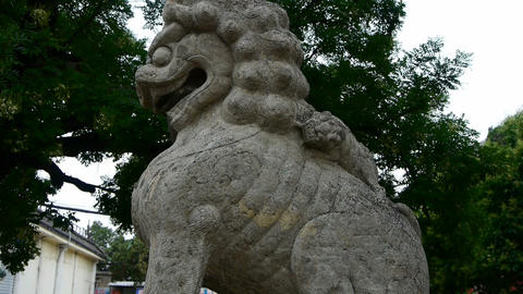 stone lions,historical monuments Stock Video Footage