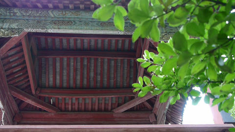 Chinese ancient building eaves,Roof tiles & tree leaves Footage