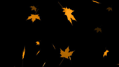 HD Loopable Falling Maple Animation with Alpha Channel Stock Video Footage