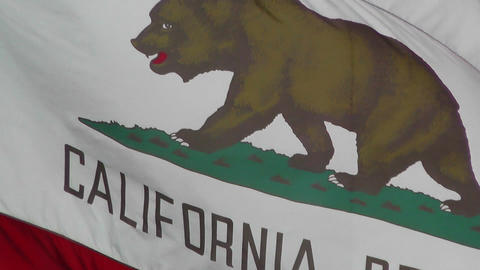 California flag in strong wind 60 fps native slowmotion 01 Stock Video Footage