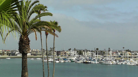 San Diego California 06 Stock Video Footage
