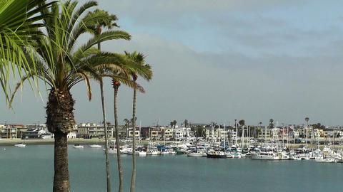 San Diego California 06 Stock Video Footage