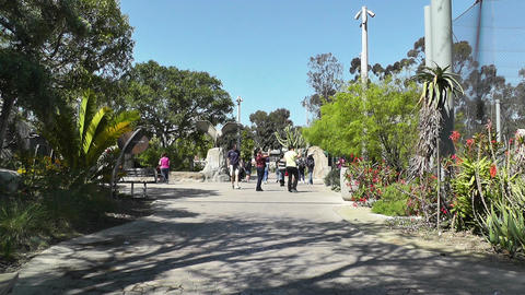 San Diego Zoo 01 Stock Video Footage