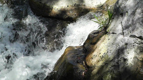 Tropical Waterfall 07 60fps native slowmotion Stock Video Footage