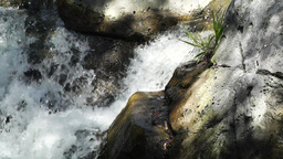 Tropical Waterfall 07 60fps native slowmotion Footage