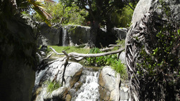 Tropical Waterfall 11 60fps native slowmotion Footage