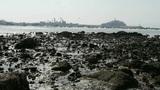 Island of QingDao city.Warship moored in port,reef Footage