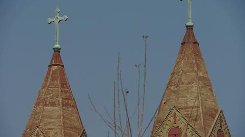 Panoramic of Qingdao Catholic Church & tree Stock Video Footage