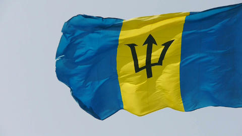Barbados flag is fluttering in wind Stock Video Footage