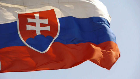Slovakia flag is fluttering in wind Stock Video Footage