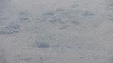 clear & transparent Repulse Bay ripple,Sparkling lake,gravel Footage