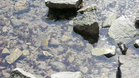 clear & transparent Repulse Bay ripple,Sparkling... Stock Video Footage