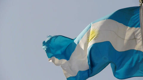 Argentina flag is fluttering in wind Stock Video Footage