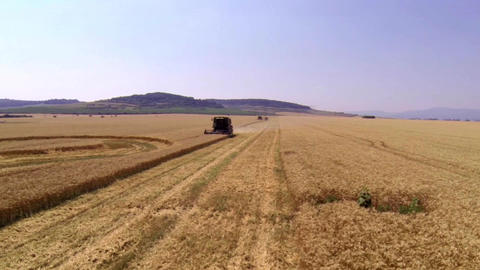 Aerial view of a combine that harvests wheat 2 Footage