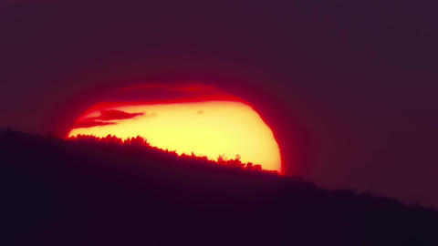 Giant globe of the sun that slips behind the trees at sunset 46 Footage