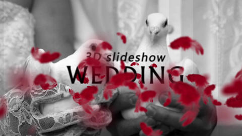 3D Wedding Slideshow After Effects Template