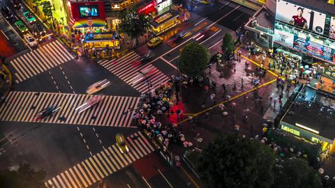 Shibuya Crossing In Timelapse, Tokyo, Japan stock footage