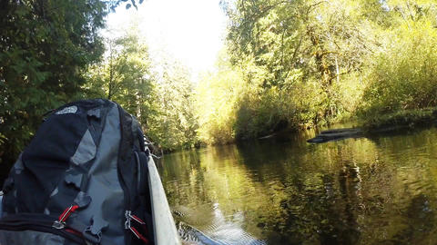 Paddling a canoe down a river Footage
