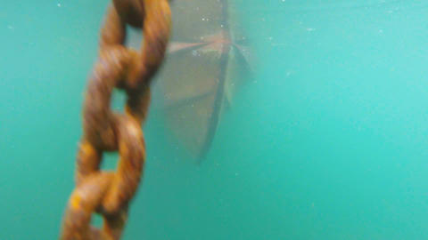 Boat anchor ascending Footage