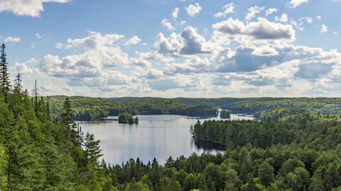 Algonquin Provincial Park , Canada - Timelapse - Daytime in the park Footage