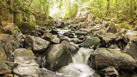 Algonquin Provincial Park , Canada - Timelapse - River in the park Footage