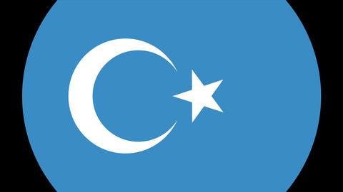 East Turkestan Alpha-4K MP4 Animation