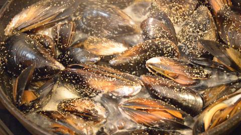 Mussels Prepared On Hot Pan Footage