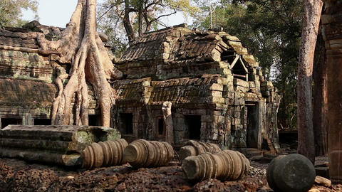 Cambodia Angkor Wat Ta Prohm temple Tomb Raider tree roots ruins Footage