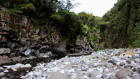 La Reunion Tropical gorge, canyon with river Footage