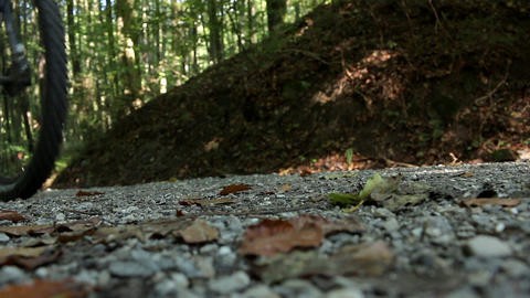 Mountainbiker wheels on a forest track passing by uphill gravel road Live Action