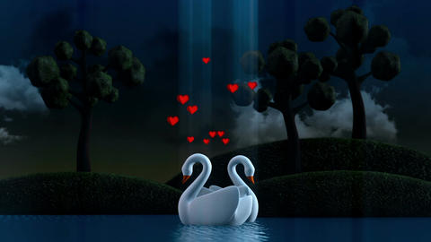 Couple of swans Animation