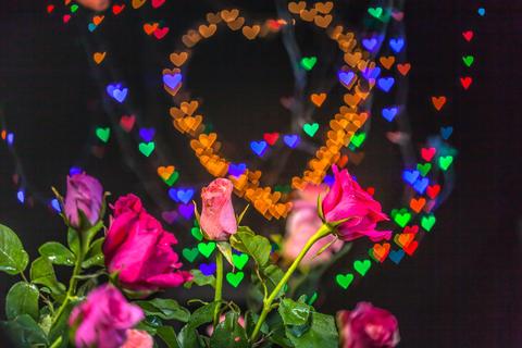 Rose flowers in the heart background Fotografía