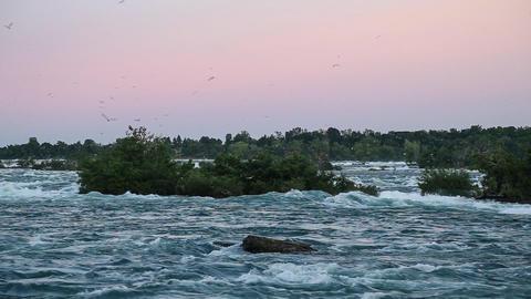 Niagara River near the Horseshoe Falls (United States / Canada) Footage