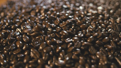 Organic Coffee Beans Extreme Close Up Falling and Landing on Pile Footage