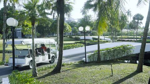 Little touristic bus driving through the park Footage