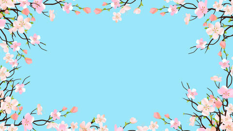 Spring Blossom Pink Sakura Frame Border On Transparent Background Template Animation