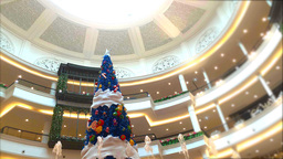 Celebrate The New Year, Fountain And Christmas Tree stock footage
