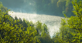 Time lapse of fast rising mist from a river Footage