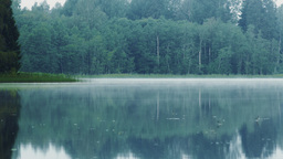 Thin layer of mist flowing across a calm lake Footage
