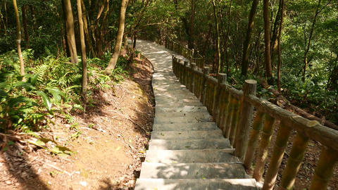 Walk down by concrete staircase in deep sunny forest Footage