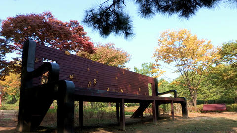 Youngsan Family Park in Seoul, Korea Live Action
